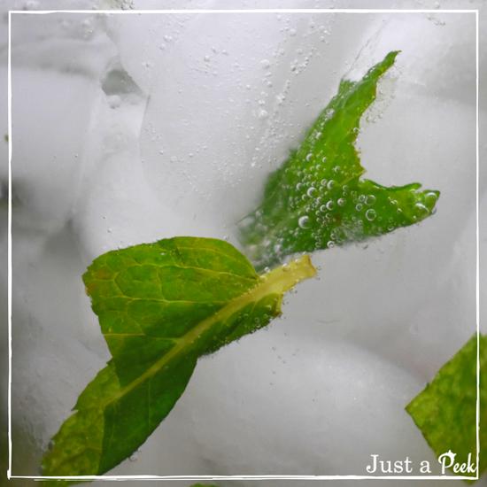 Closeup mojito recipe bubbling