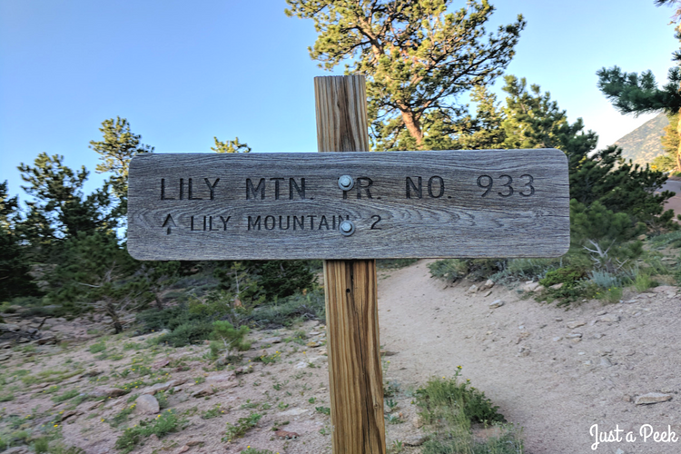 Lily Mountain Hike 13