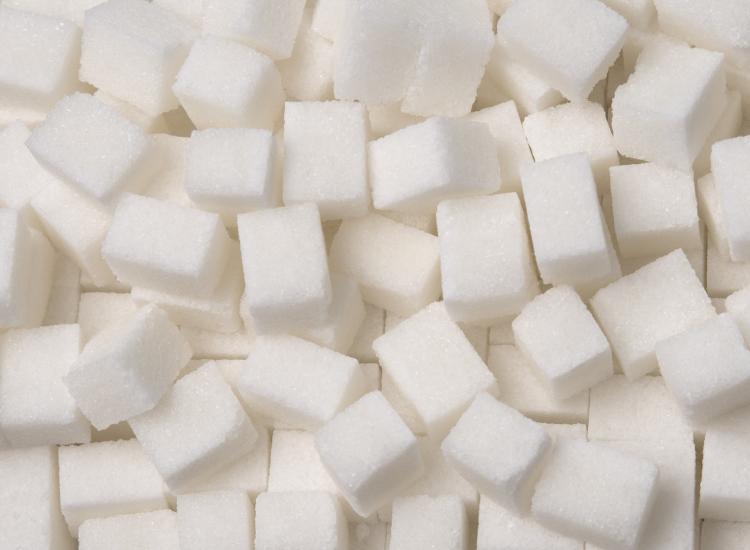 Sugar Course 2