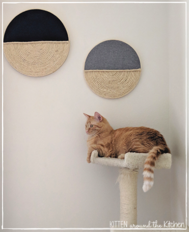 DIY Cat Round Wall Hanging Scratching Post Cat Tree 4
